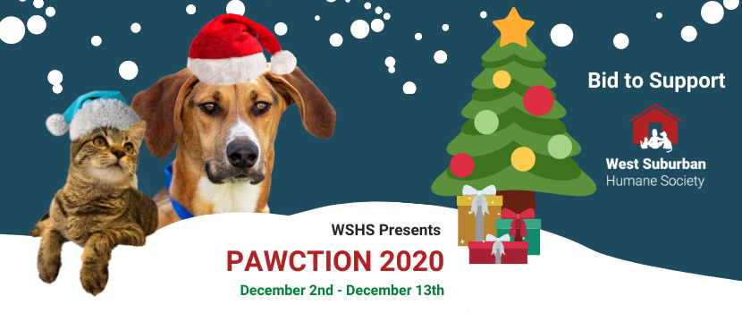 Pawction 2020 Event Size